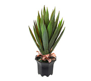 Planta Box Wood Artificial Dongli Verde 51Cm